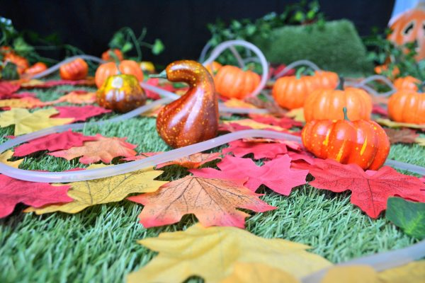 Sensory Pumpkin Patch at One2eleven October Half Term